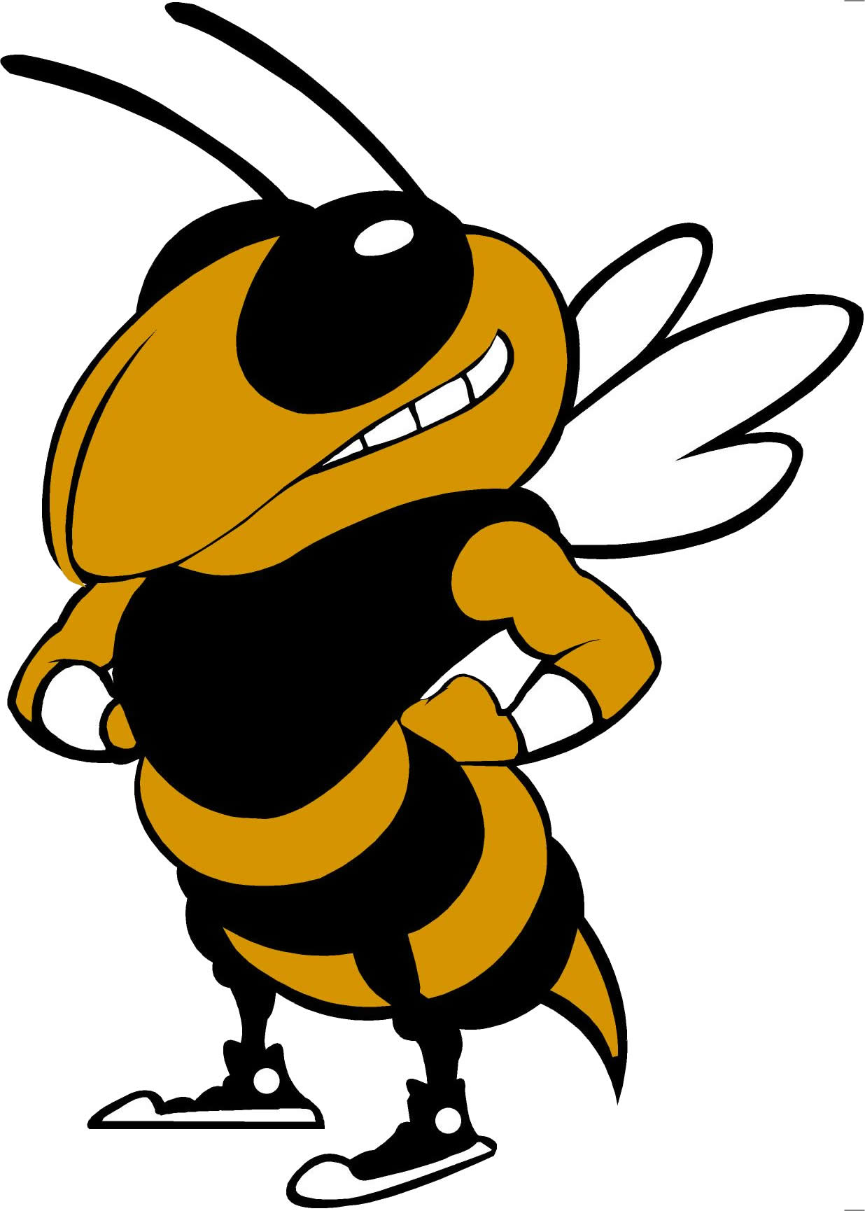 yellow jacket athletics thomas county central high school